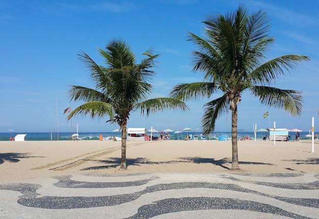 Lungomare di copacabana beach rio de janeiro con palme e cielo blu. Foto Premium