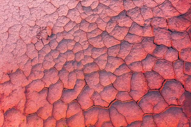 Sfondo di terra incrinata metaforico per il cambiamento climatico e il riscaldamento globale Foto Premium