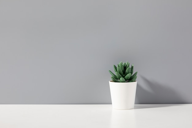 Sfondo tridimensionale creativo con vaso di fiori Foto Premium