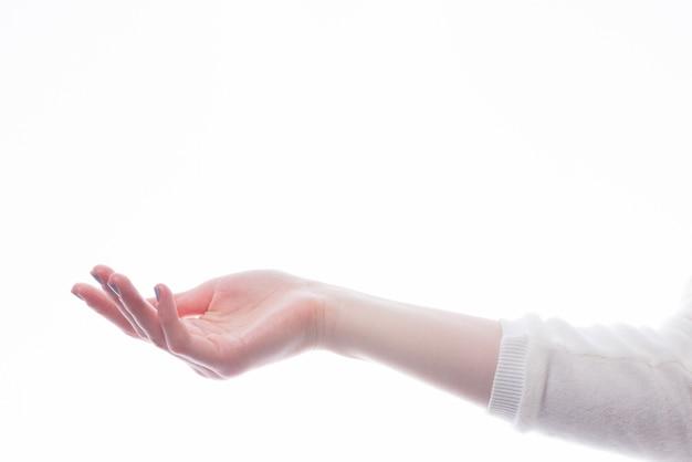 Ritaglia la mano tesa Foto Premium