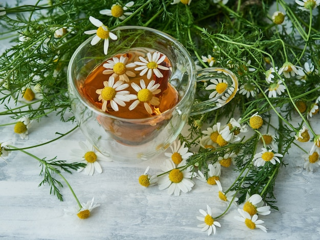 Tazza di tisana naturale, con fiori di camomilla su grigio Foto Premium