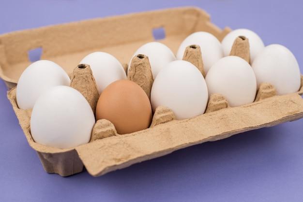 Concetto di diversità. close up view foto di dieci e uno marrone uova in scatola di cartone isolato viola viola superficie Foto Premium