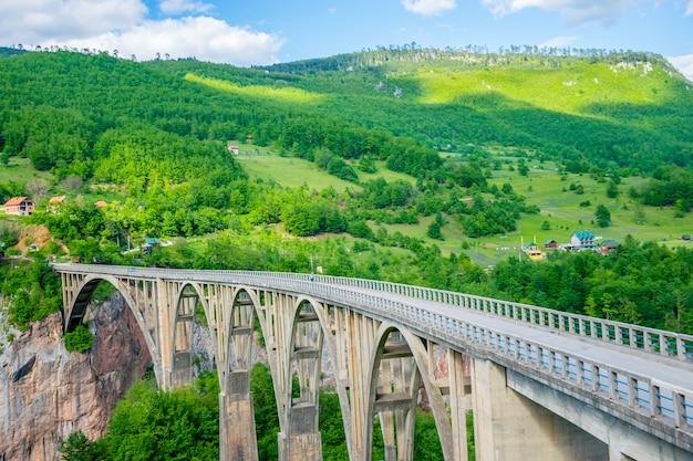 Il ponte djurdjevic attraversa il canyon del fiume tara nel nord del montenegro. Foto Premium