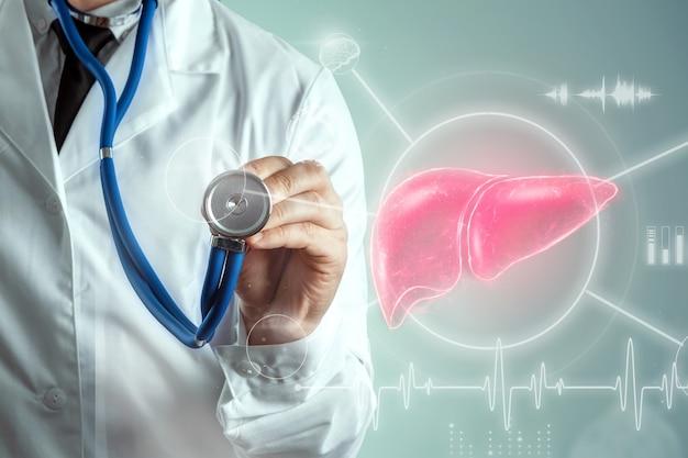 Medico e ologramma del fegato, dolore al fegato e segni vitali. concetto di tecnologia, trattamento dell'epatite, donazione, diagnostica online. Foto Premium