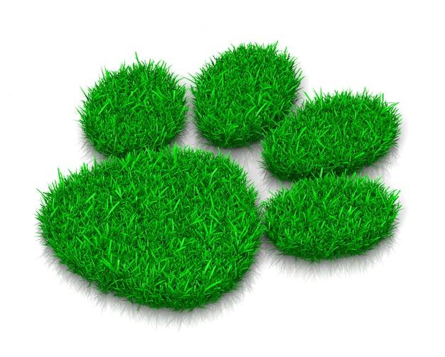 Impronta di erba di cane Foto Premium
