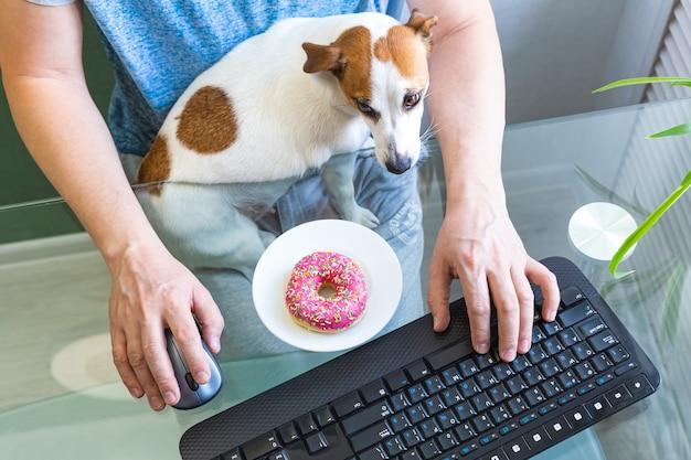 Il cane si siede tra le braccia di un uomo che lavora al computer. Foto Premium