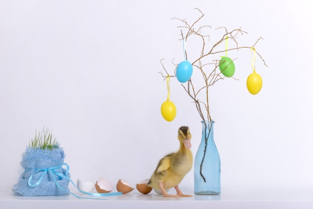 Anatroccolo e coperture delle uova e decorazione di pasqua Foto Premium