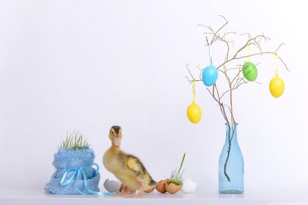 Anatroccolo di pasqua e giovane erba con le coperture delle uova Foto Premium