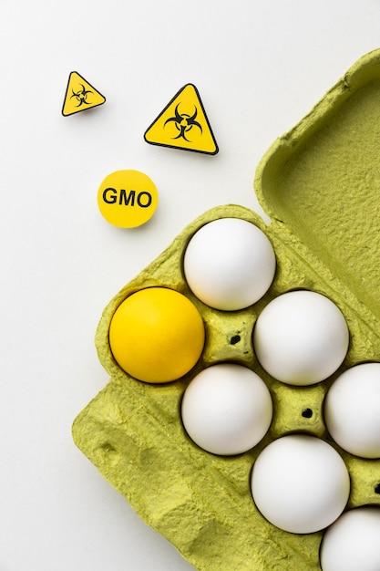 Uova ogm science food Foto Premium