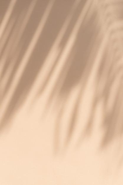 Rami di palme tropicali esotici su sfondo beige pastello pallido Foto Premium
