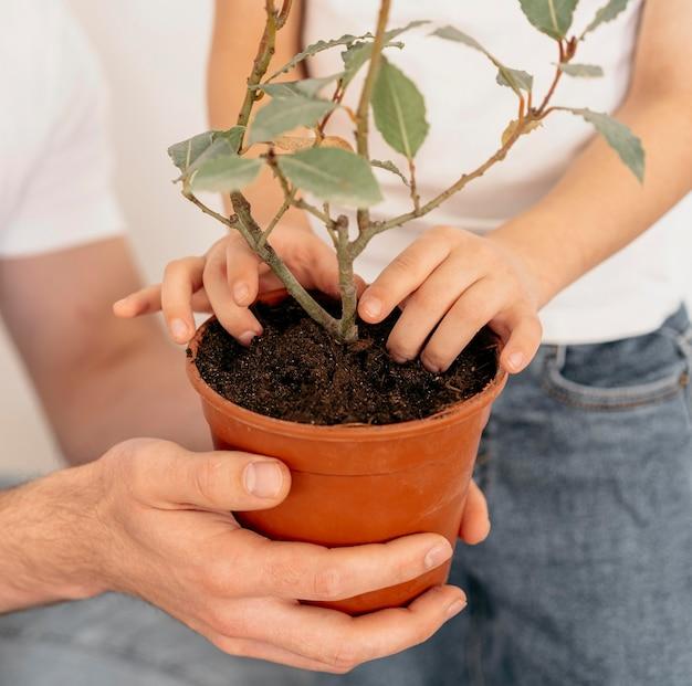 Padre e figlio che tengono il vaso della pianta Foto Premium