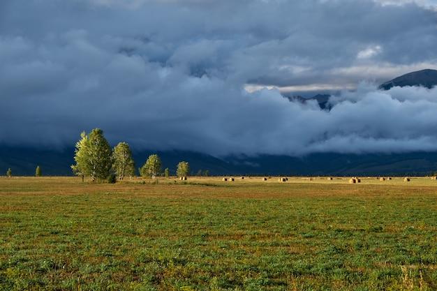 Campo, montagne e nuvole. panorama serale dopo la pioggia. Foto Premium