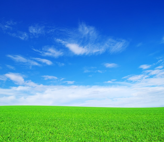 Field valley e cielo blu Foto Premium