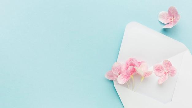 Fiori piani dell'ortensia rosa di disposizione in busta con copia-spazio Foto Premium
