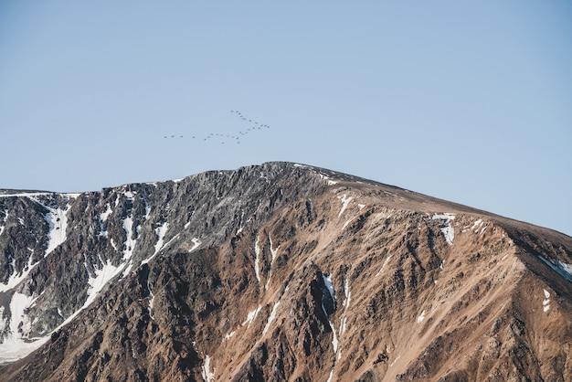 Lo stormo degli uccelli in cielo blu sorvola la cresta nevosa della montagna. bellissimo paesaggio scenico con sagome di uccelli migratori sopra il picco. stormo di uccelli sopra le rocce con neve. splendido scenario minimalista. Foto Premium