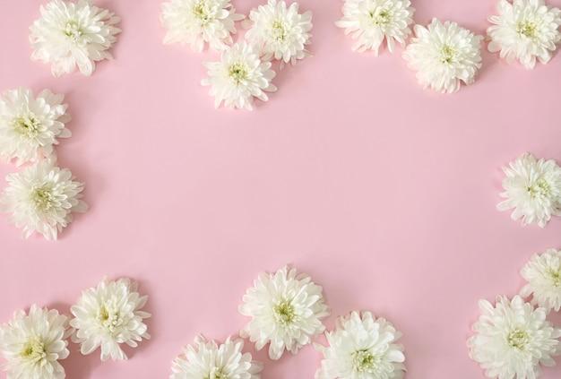 Cornice di fiori margherita bianca Foto Premium
