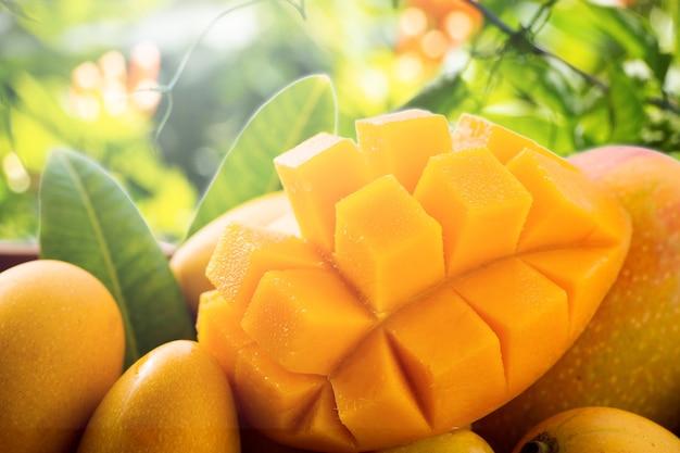 Frutto di mango fresco e bello in un cesto di bambù su sfondi naturali, copia spazio (spazio testo), vuoto per il testo. Foto Premium