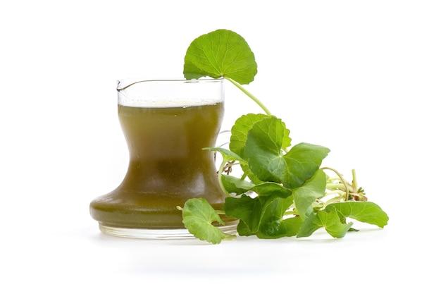 Centella asiatica fresca o foglie di centella asiatica e succo di frutta isolato su una superficie bianca. Foto Premium