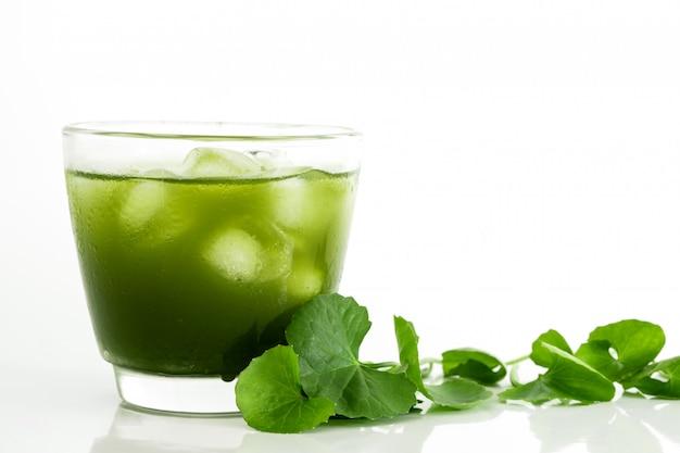 Cola verde fresca di gotu, foglia asiatica di centella e succo su bianco Foto Premium