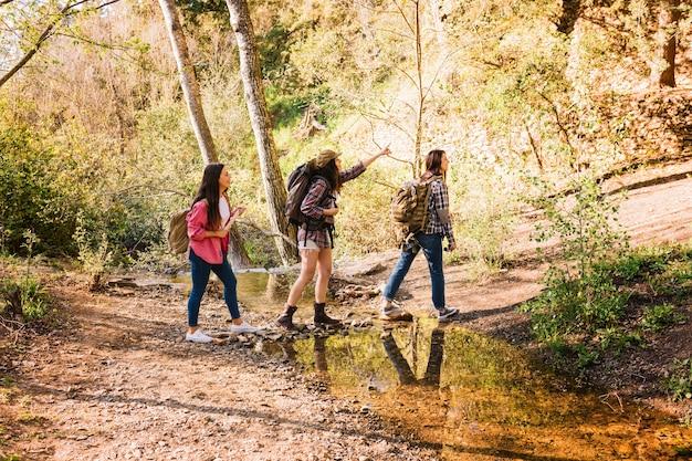 Amici che viaggiano nella foresta Foto Premium