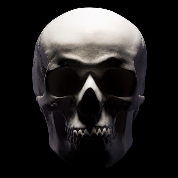 Vista frontale del modello in gesso del cranio umano isolato su sfondo nero con tracciato di ritaglio. concetto di terrore, apprendimento fisiologico e disegno. Foto Premium