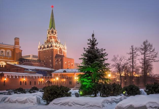 Albero di pelliccia in alexander garden e la trinity tower del cremlino di mosca Foto Premium