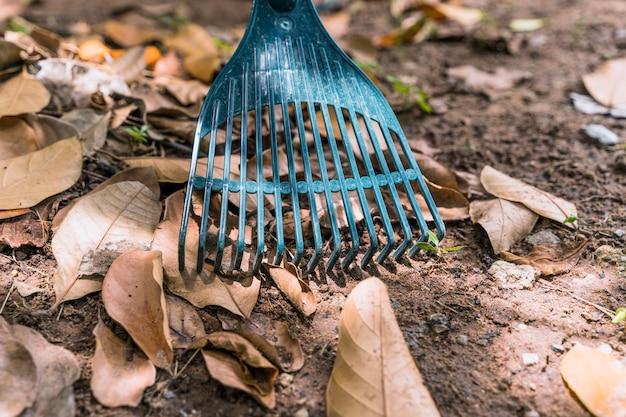 Giardinaggio Foto Premium