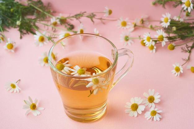 Tazza di vetro di tisana naturale, fiori di camomilla farmacia sul rosa Foto Premium