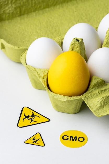 Ogm science food uovo giallo Foto Premium