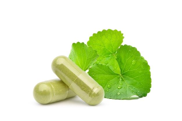 Gotu kola centella asiatica capsule con foglie fresche isolati su sfondo bianco. Foto Premium