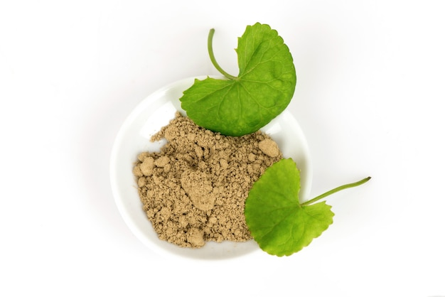 Gotu kola o centella asiatica foglie verdi e polvere isolati su sfondo bianco. Foto Premium