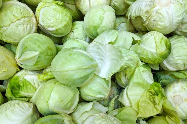 Cavolo verde in scatola, fondo. varietà di cavolo fresco coltivata nel negozio. cibo gustoso e salutare Foto Premium