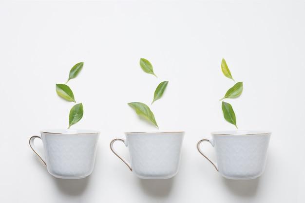 Foglie verdi sopra le tre tazze di tè su sfondo bianco Foto Premium