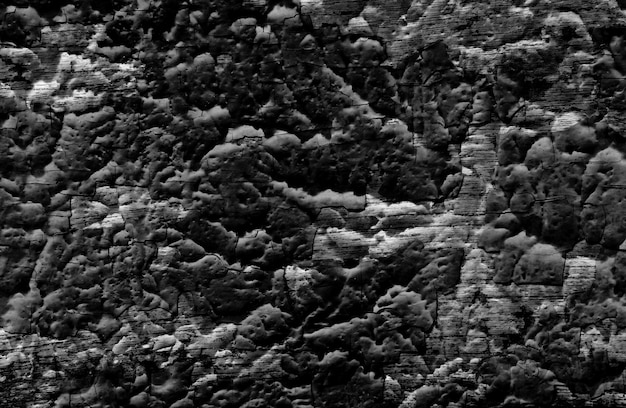 Il nero di lerciume di struttura della parete della crepa, vecchio fondo della parete Foto Premium
