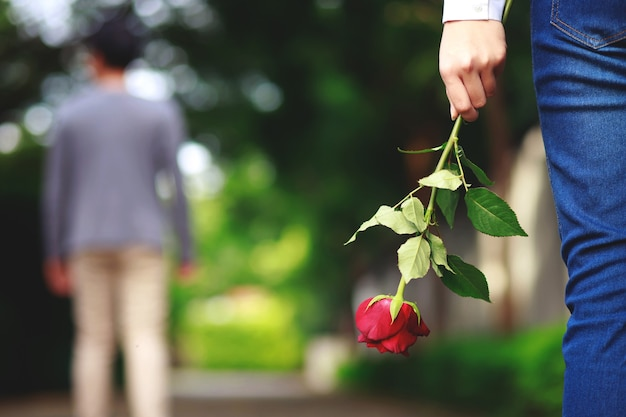 Mano che tiene una rosa rossa Foto Premium