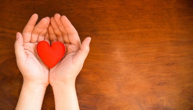 Mani che tengono il cuore danno amore filantropia donare aiuto calore prendersi cura di san valentino assistenza sanitaria amore organo donazione assicurazione famiglia giornata mondiale della salute Foto Premium