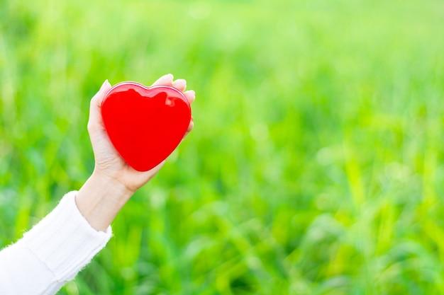 Mani che tengono cuore rosso. - assistenza sanitaria, amore, donazione di organi, consapevolezza, benessere, concetto Foto Premium