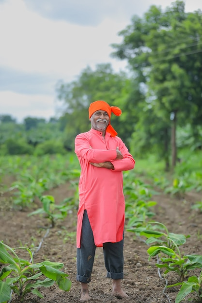 Felice agricoltore indiano in piedi e sorridere al campo Foto Premium