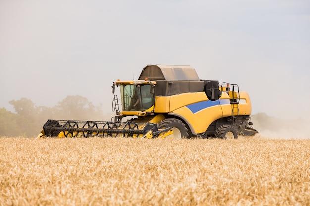 Harvester raccoglie chicchi di grano nel campo. Foto Premium