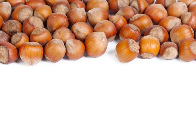 Nocciola. nocciola organica fresca isolata su fondo bianco. Foto Premium