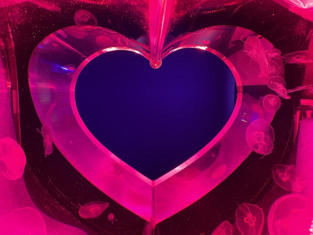 Cuore di un acquario al neon con meduse Foto Premium
