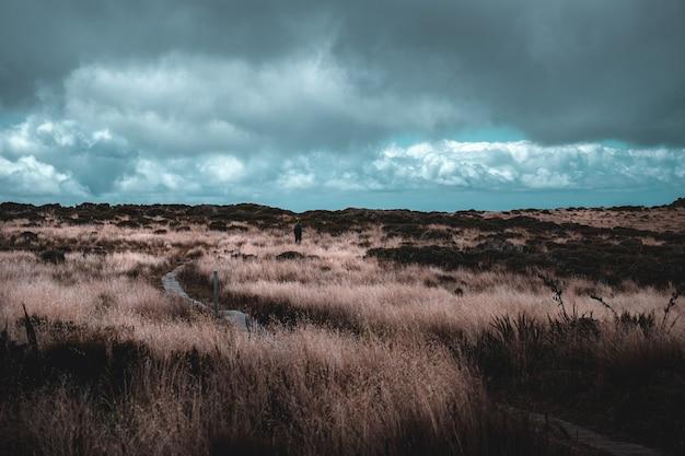 Un uomo che fa un'escursione che cammina sul sentiero con erba gialla su un'alta montagna. scena di pioggia nuvolosa e doccia. Foto Premium