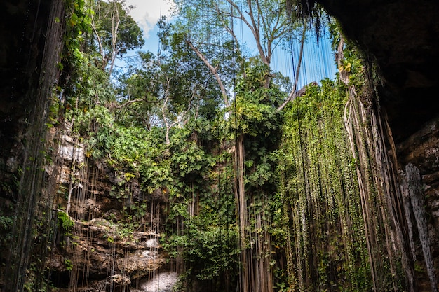Grotta sotterranea del lago cenote di ik kil Foto Premium