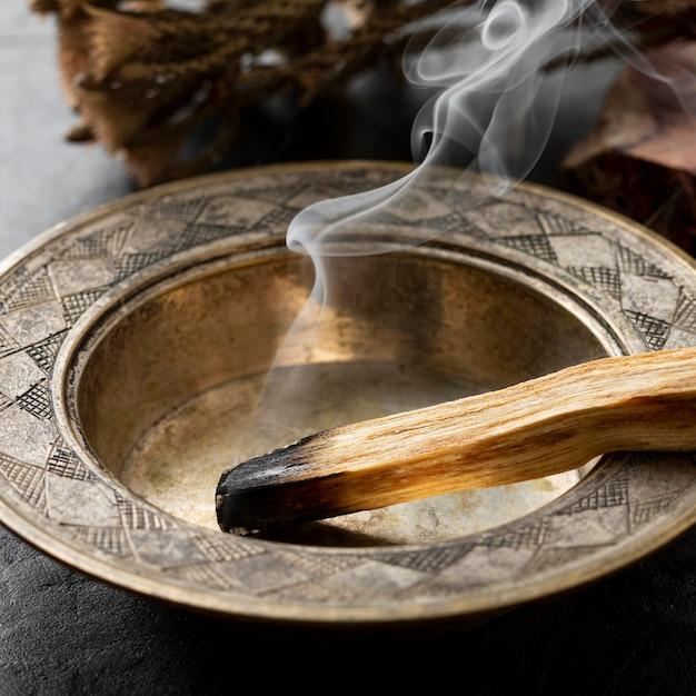 Primo piano della pianta di legno santo spagnolo di incenso Foto Premium