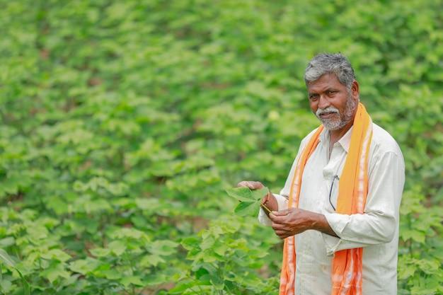Contadino indiano al giacimento di cotone, india Foto Premium