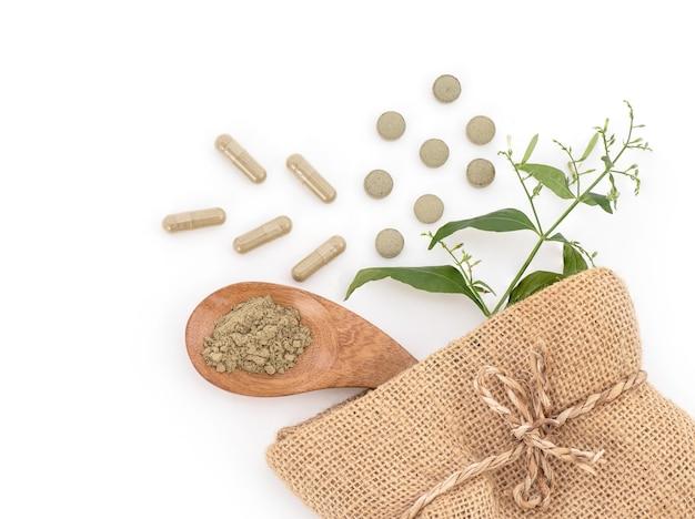 Kariyat o andrographis paniculata, ramo di foglie verdi, capsule, compresse e polvere isolato su bianco Foto Premium