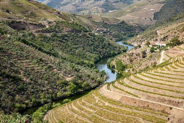 Paesaggio di enormi montagne con un fiume curvo Foto Premium