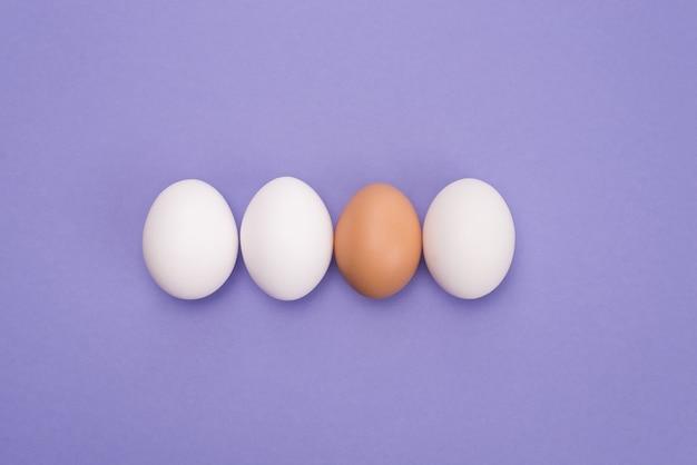 Concetto di leadership. in alto sopra vista ravvicinata foto di tre stesse uova e un uovo con guscio marrone isolato su sfondo di colore viola Foto Premium