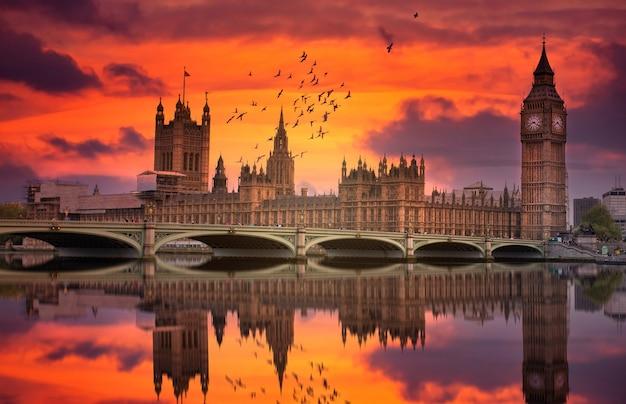 London westminster e il big ben si riflettono sul tamigi al tramonto con gli uccelli che volano sopra la città Foto Premium