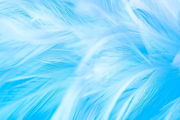 Foto a macroistruzione di bella morbidezza piume blu linea vintage texture Foto Premium
